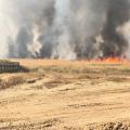 اندلاع حرائق في عدة كيبوتسات صهيونية