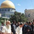 184 مستوطناً يقتحمون المسجد الأقصى