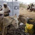 نقص مياه في اليمن
