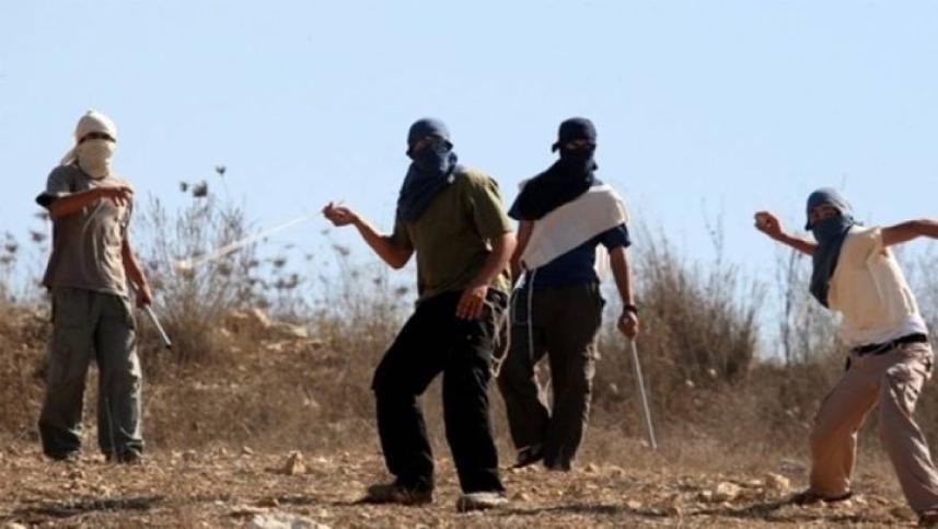 إصابة مواطنة إثر اعتداء مستوطنين
